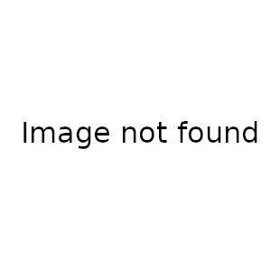 переводная татуировка яркий лев